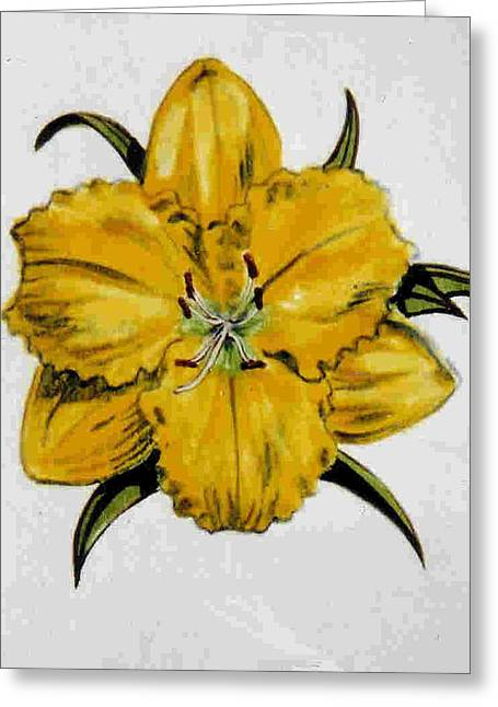 Ceramics Greeting Cards - Summer Daylily Greeting Card by Dy Witt