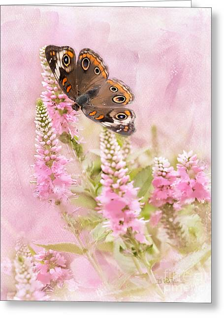 Greeting Card featuring the photograph Summer Daze by Betty LaRue