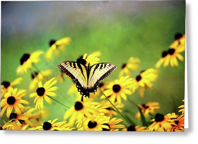 Summer Dream Greeting Card by Theresa Campbell