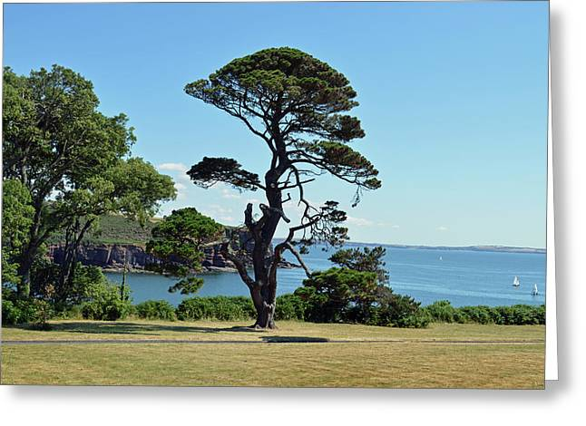 Summer Dunmore East Greeting Card