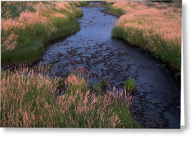 Summer Evening On Palouse River Greeting Card by Jerry McCollum