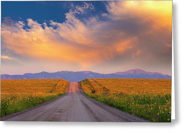 Greeting Card featuring the photograph Summer Fantastic by Tim Reaves