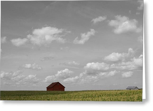 Summer Fields II Greeting Card
