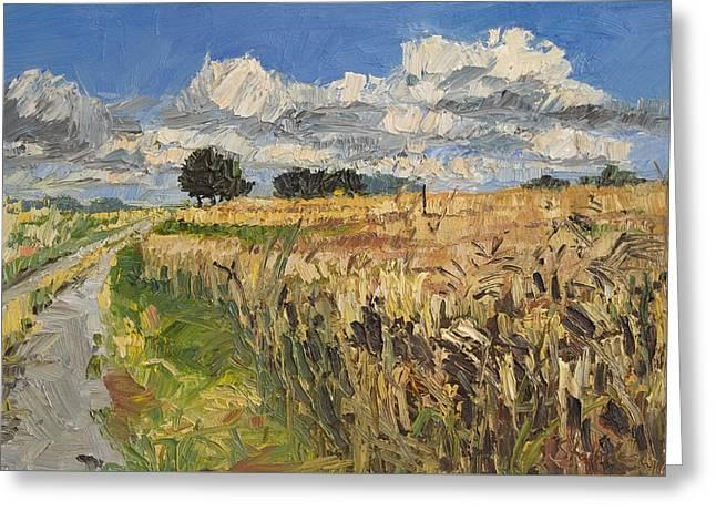 Summer Fields Plein Air Landscape Greeting Card by Martin Stankewitz