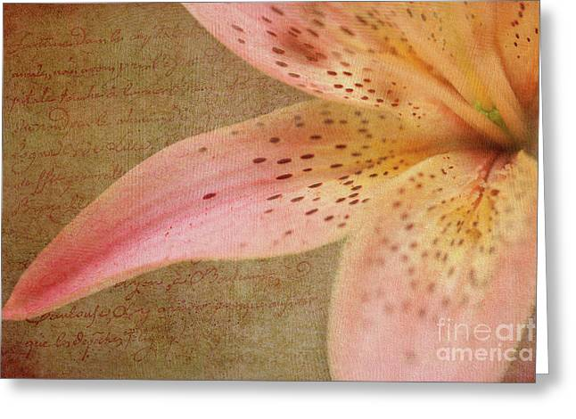 Summer Greetings Greeting Card by Beve Brown-Clark Photography