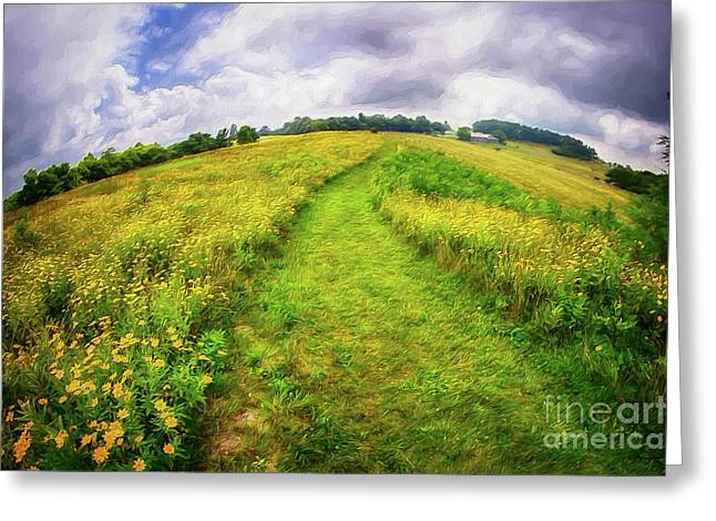 Greeting Card featuring the painting Summer Hike Through Blue Ridge Flowers Ap by Dan Carmichael