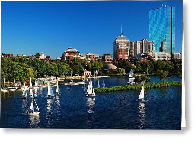 Summer In Boston Greeting Card