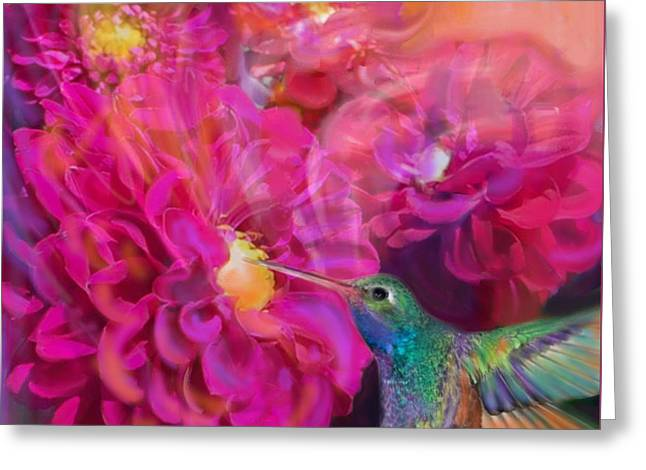 Summer In Full Bloom  Greeting Card