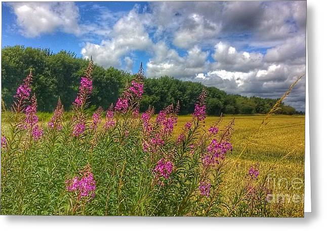 Summer In The Country Greeting Card