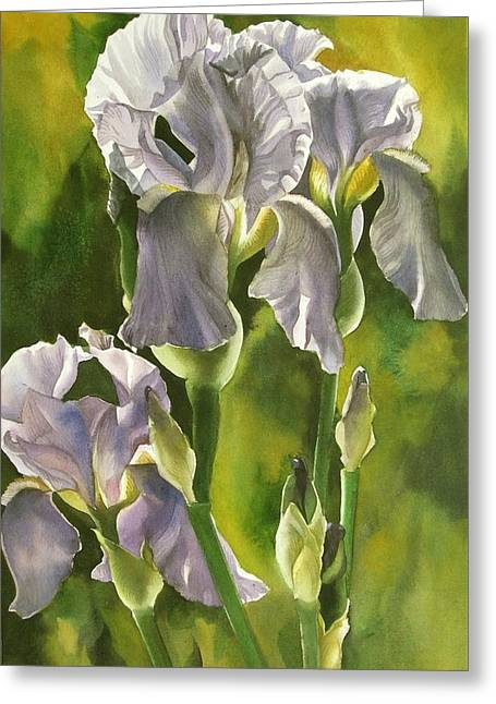 Greeting Card featuring the painting Summer Irises by Alfred Ng