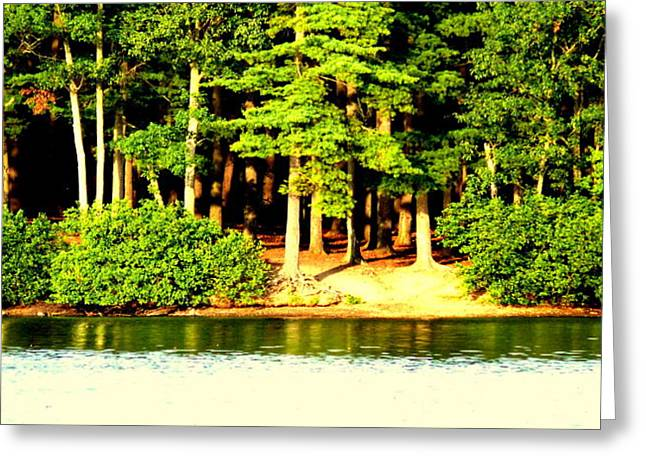 Summer Lake Greeting Card by Aron Chervin