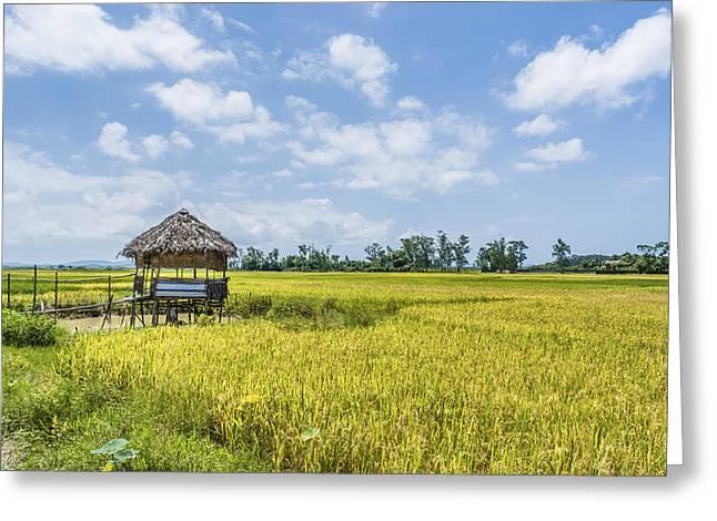 Summer Landscape Greeting Card by Minh Nguyen Van