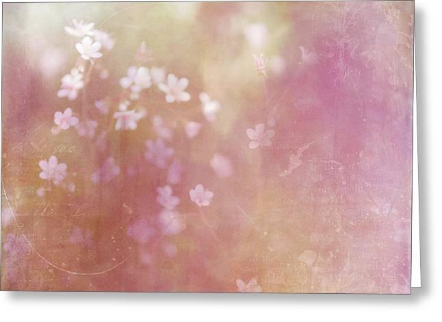 Summer Light Greeting Card by Margaret Goodwin