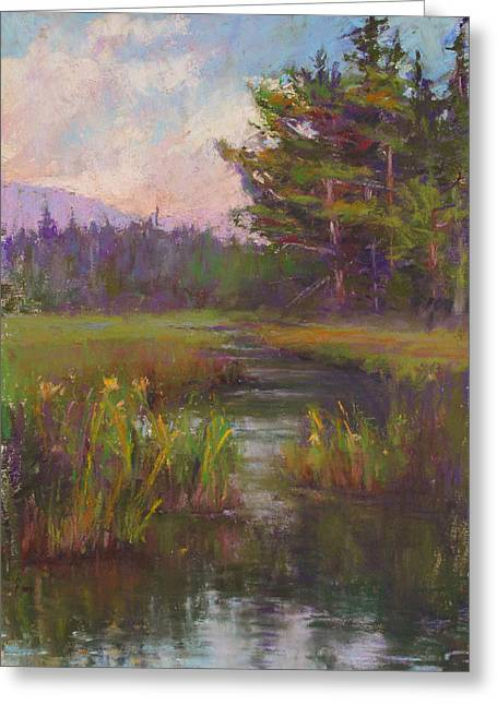 Summer Morning Beaver Marsh Greeting Card