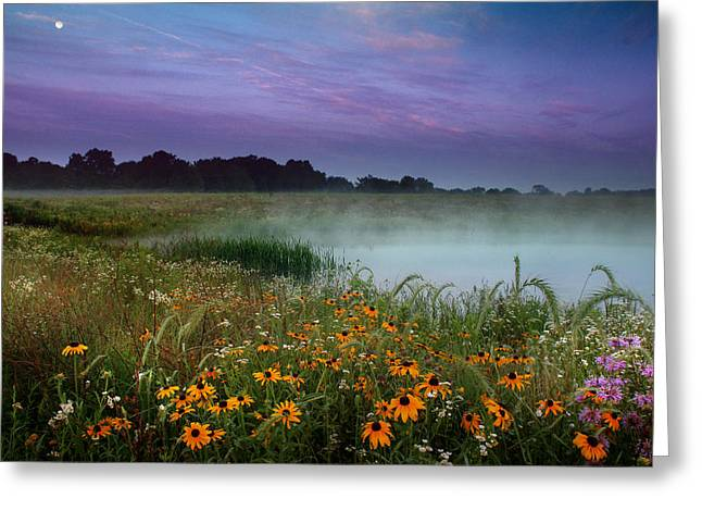 Summer Morning Greeting Card by Rob Blair