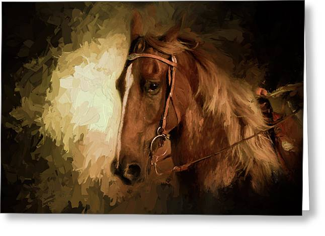 Summer Night In The Show Ring Greeting Card