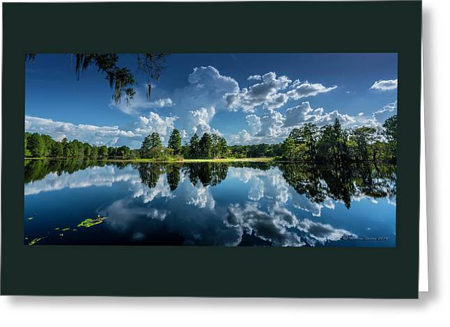 Summer Of Calm Greeting Card by Marvin Spates