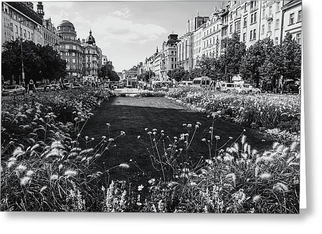 Greeting Card featuring the photograph Summer Prague. Black And White by Jenny Rainbow
