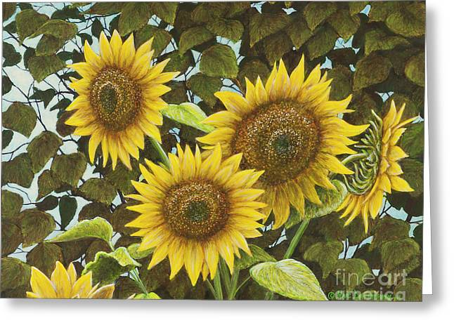 Summer Quintet Greeting Card