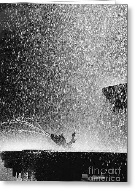 Summer Rain Greeting Card by Hideaki Sakurai