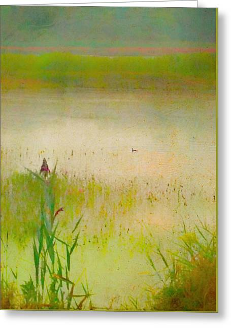 Summer Reeds Greeting Card