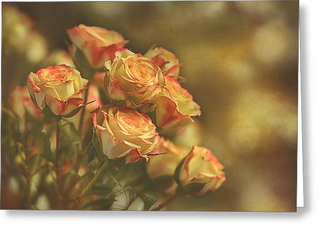 Summer Roses #2 Greeting Card