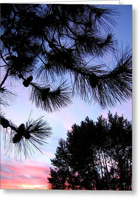 Summer Silhouettes Greeting Card by Will Borden
