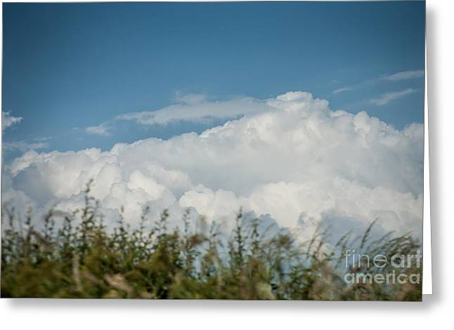 Summer Sky Greeting Card by Jan Bickerton
