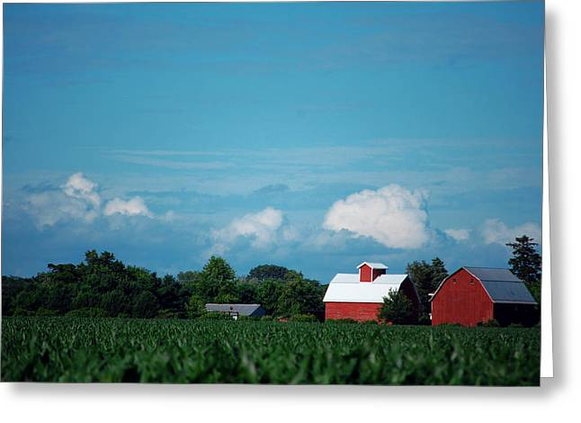 Summer Sky Summer Farm Greeting Card by Jame Hayes