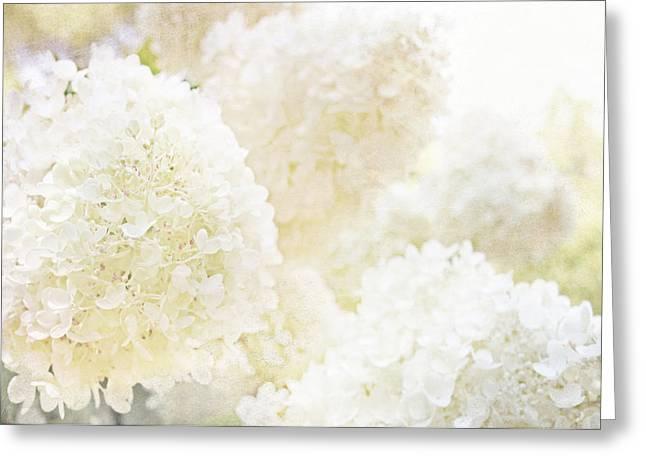 Summer Snowballs Greeting Card
