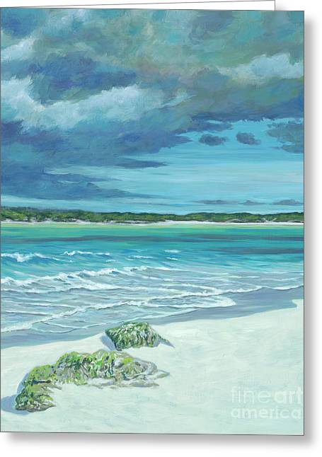 Summer Storm Greeting Card by Danielle Perry
