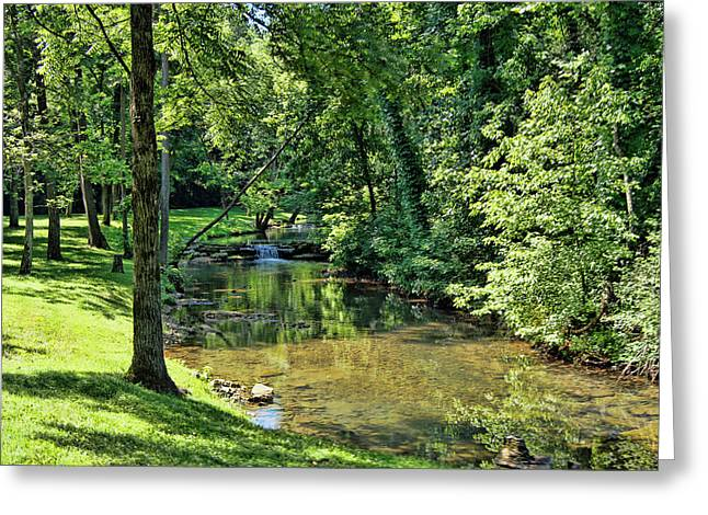 Summer Stream Greeting Card by Cricket Hackmann