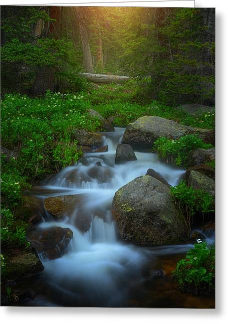 Summer Stream Greeting Card by Darren  White