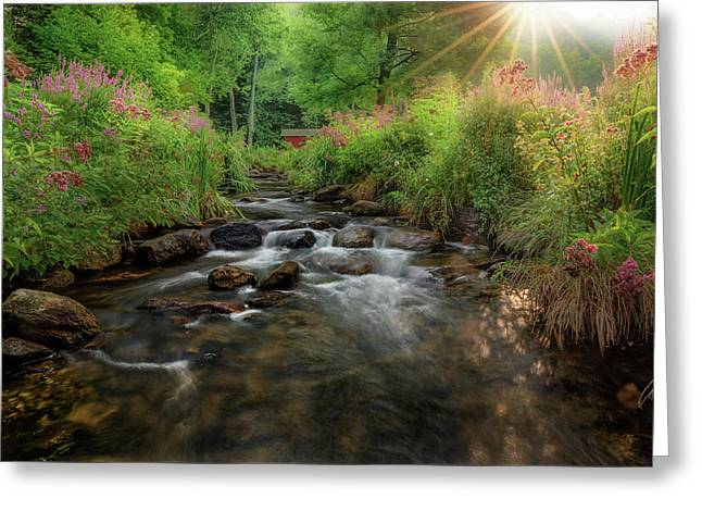 Greeting Card featuring the photograph Summer Sun 2018 by Bill Wakeley