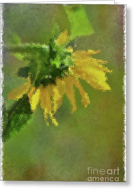 Summer Sunflower 1 Greeting Card