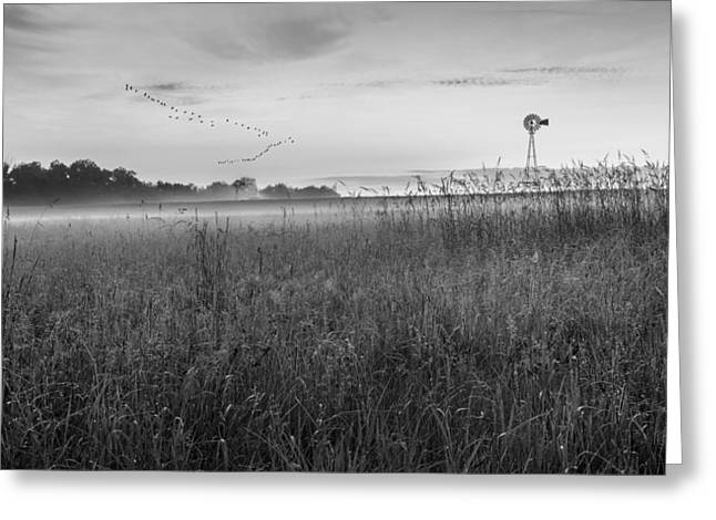 Summer Sunrise 2015 Bw Greeting Card by Bill Wakeley