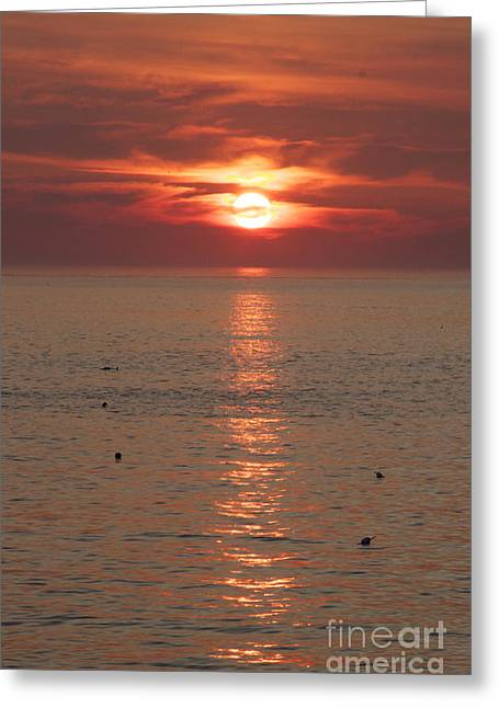 Summer Sunrise Rockport, Ma Greeting Card