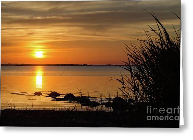 Greeting Card featuring the photograph Summer Sunset by Kennerth and Birgitta Kullman