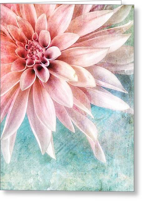 Summer Sweetness Greeting Card