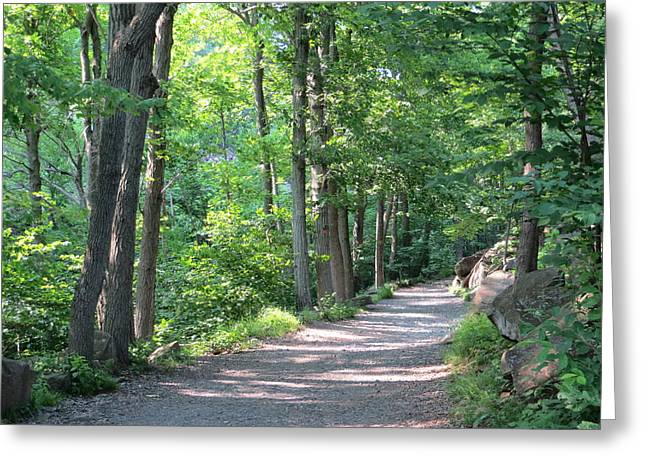 Summer Trail Greeting Card by Angela Hansen
