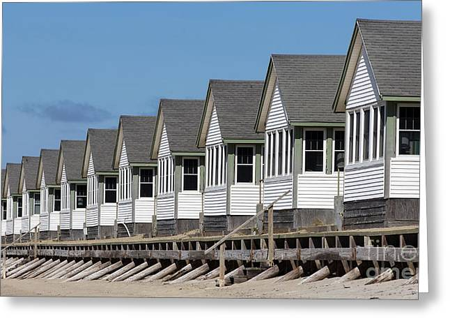 Summer Vacation Cottages At The Beach Greeting Card