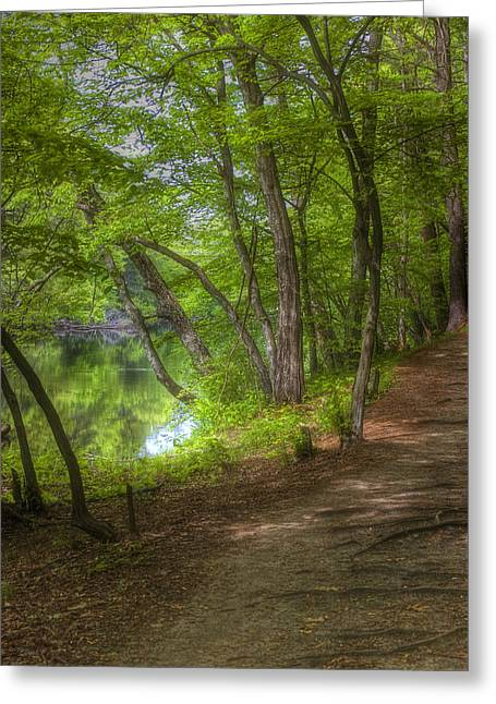 Summer Walk Greeting Card by Joann Vitali