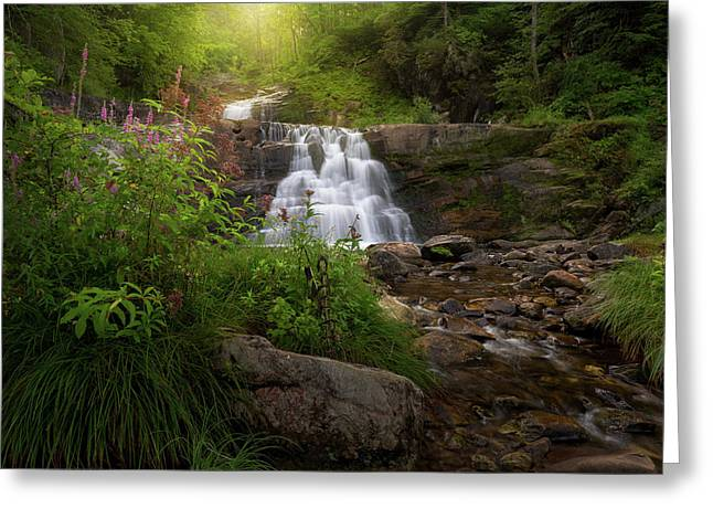 Greeting Card featuring the photograph Summer Waterfall by Bill Wakeley