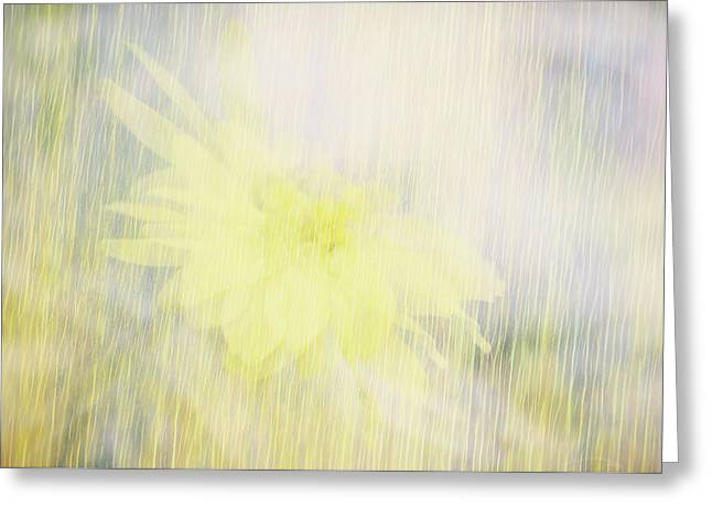 Greeting Card featuring the photograph Summer Whisper by Ann Powell