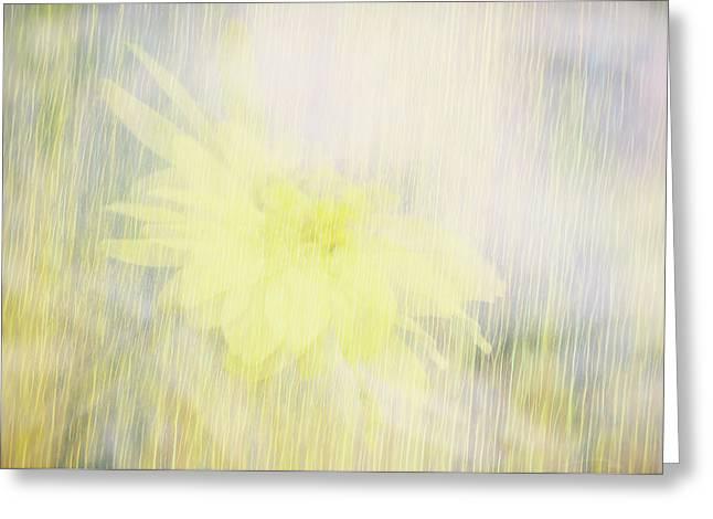 Summer Whisper Greeting Card by Ann Powell