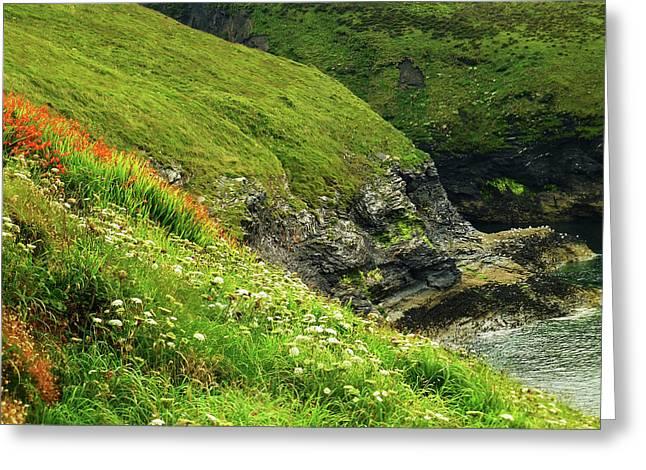 Summer Wildflowers - Cornish Coast Greeting Card