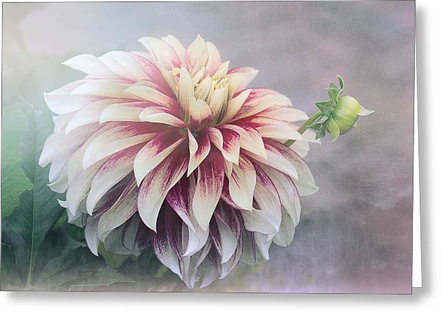 Summer's Dahlia Greeting Card by Julie Palencia