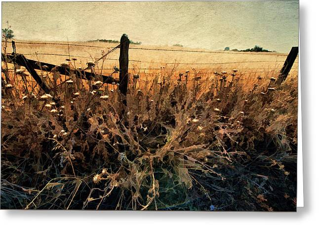 Greeting Card featuring the photograph Summertime Country Fence by Steve Siri