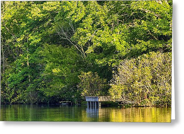 Summertime Greeting Card by Swank Photography