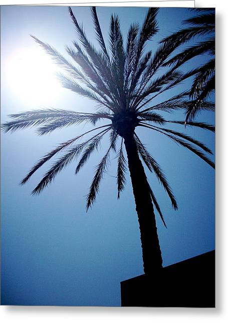 Sun And Palm Greeting Card by Marina Owens